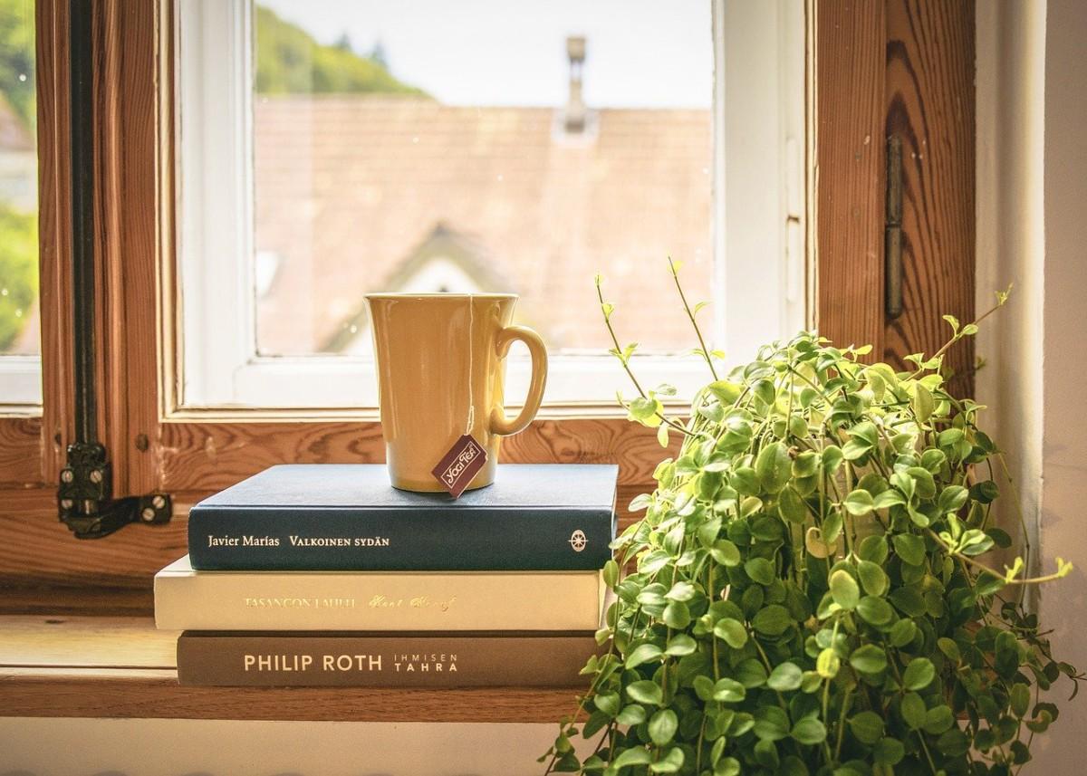 オフィス観葉植物