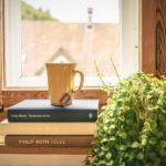 観葉植物を取り入れたオフィス作りのポイント